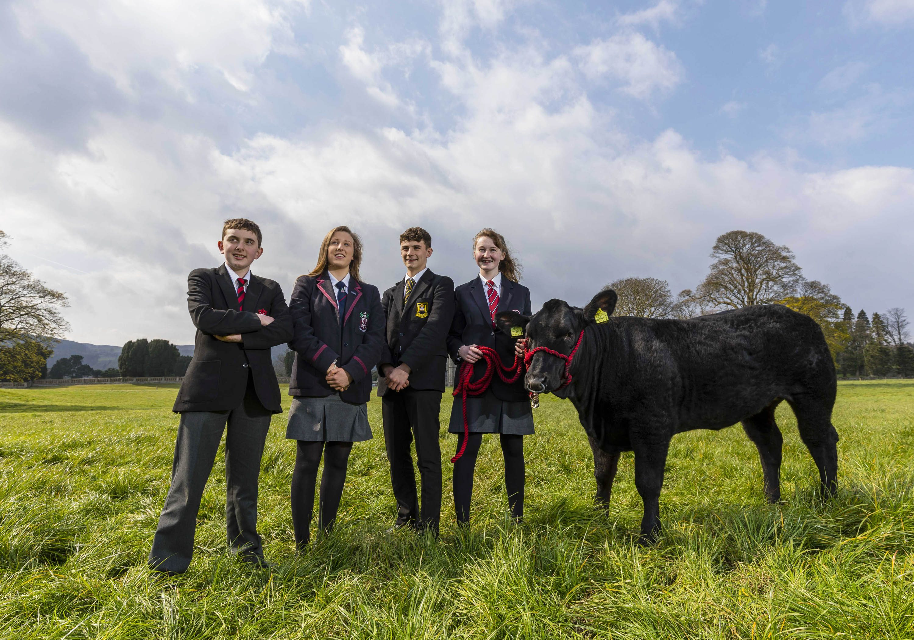 2019 ABP ANGUS YOUTH CHALLENGE FINALIST SCHOOLS ANNOUNCED