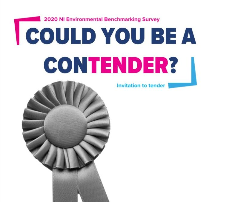 Could you be a contender